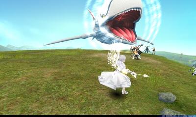 白鯨 - 突進(床無し)