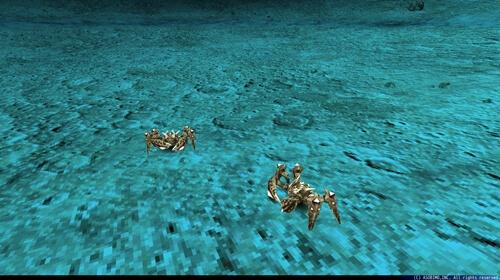 Lv150月見の小蟹